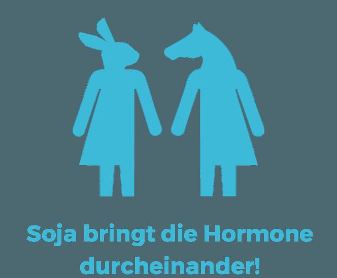 Vegane Mythen: Soja bringt die Hormone durcheinander!