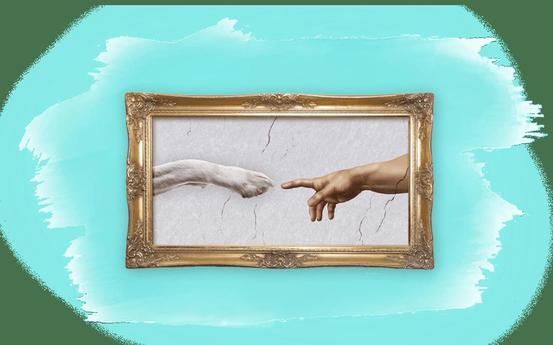 Michelangelos David mit Hundepfote als Titelbild für Artikel über besondere Fähigkeiten von Tieren
