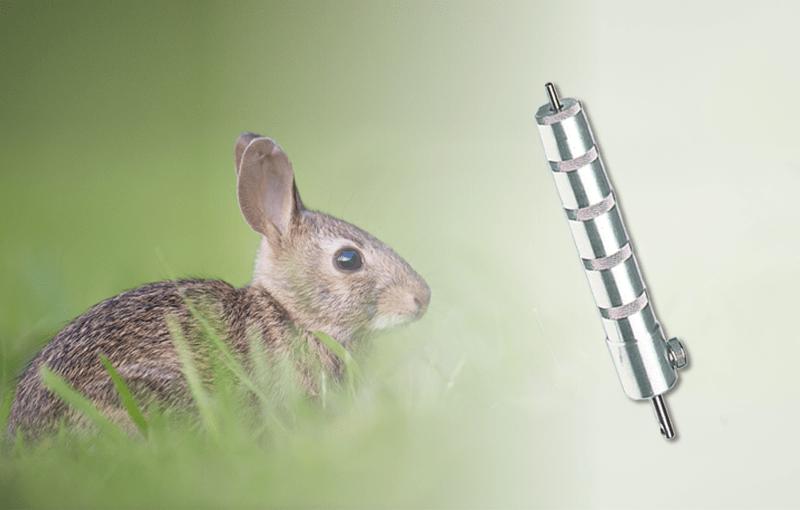 Werkzeug zum Schlachten von Kaninchen