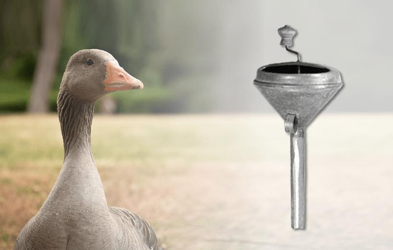 Werkzeug aus der Tierhaltung: Stopftrichter für das Stopfen von Gänsen und Enten