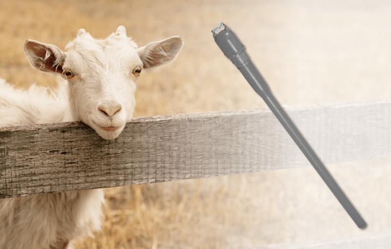 Viehtreiber als Werkzeug aus der Tierhaltung
