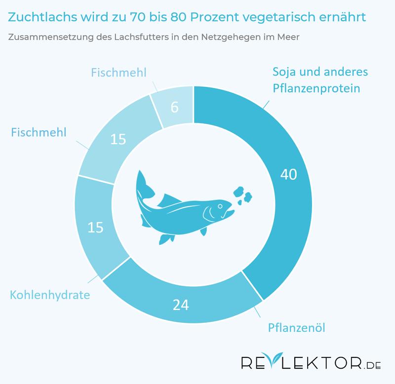Infografik: Fischfutter in der Lachszucht besteht zu 70 bis 80 Prozent aus Pflanzenfutter