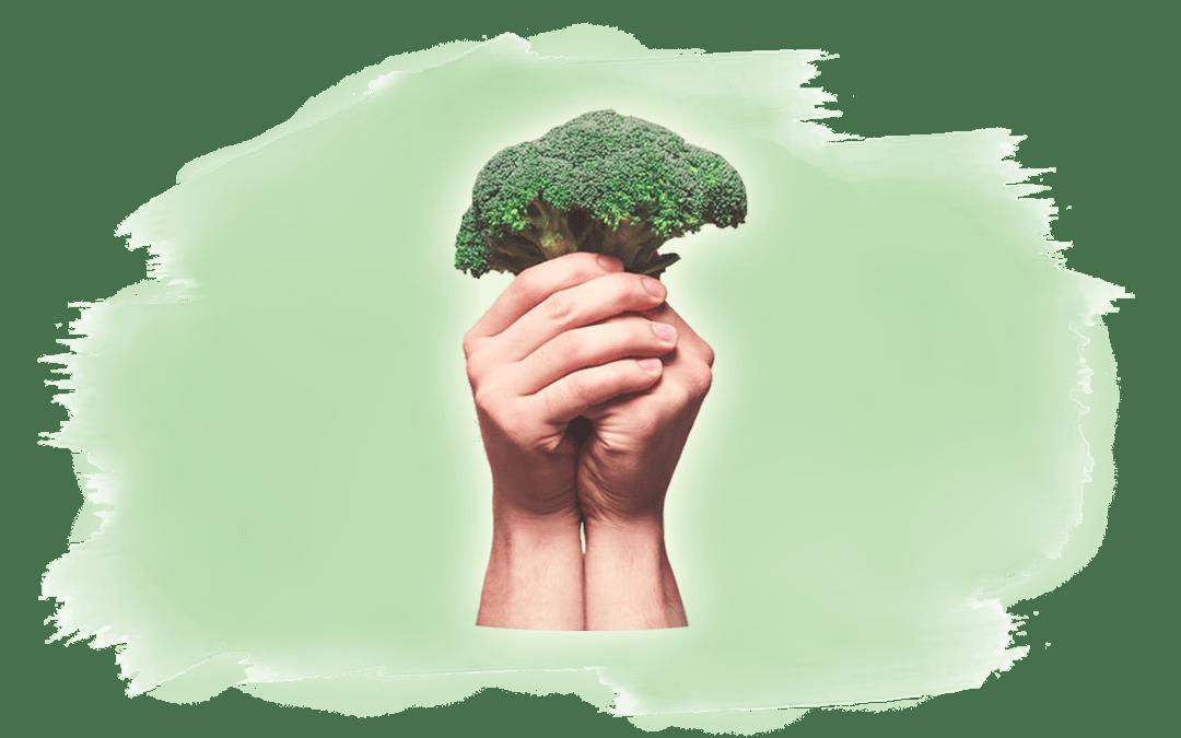 10 Gründe vegan zu leben