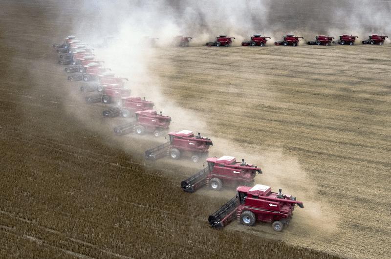 Steigender Landbedarf durch die Tierhaltung als Argument für ein veganes Leben