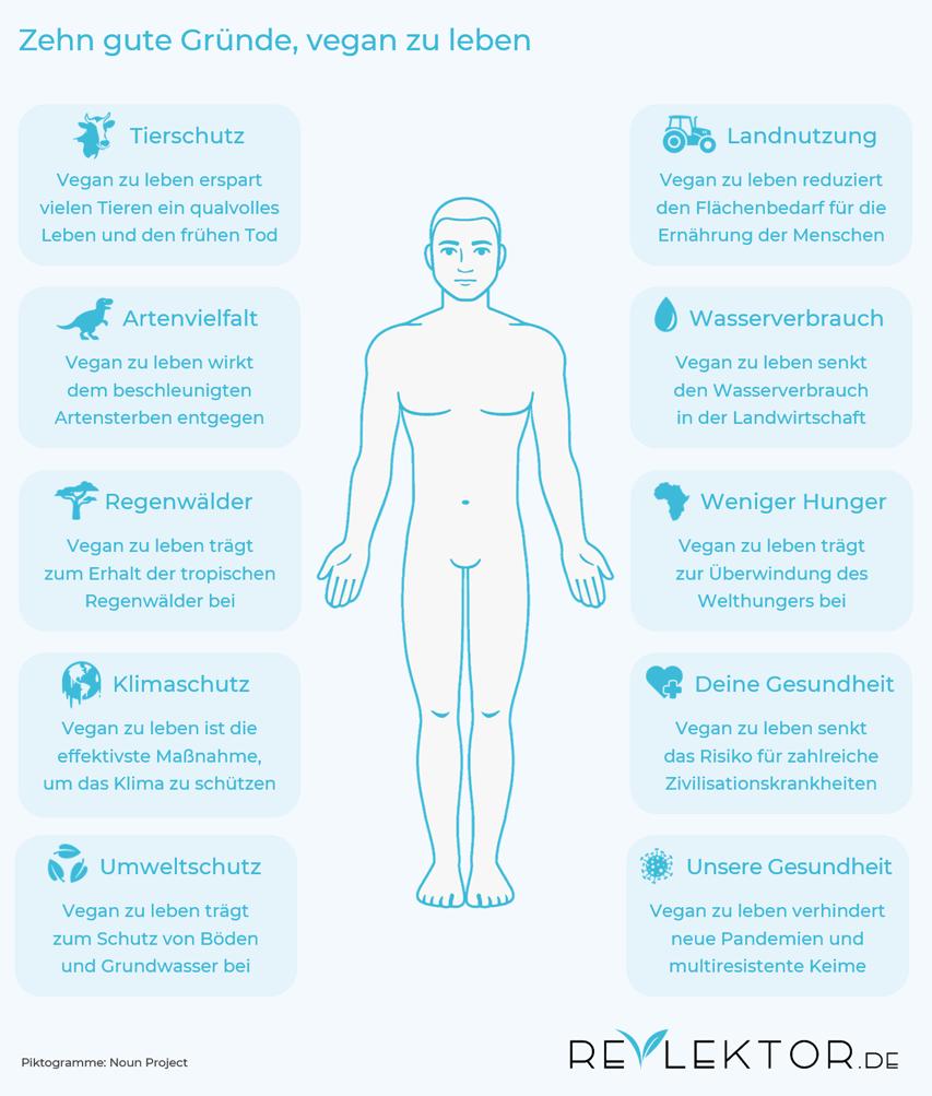 Infografik zu zehn Gründen für eine vegane Lebensweise