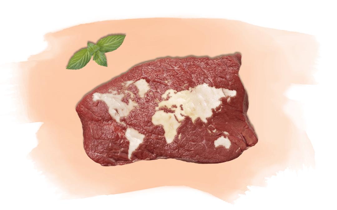 Steak mit Weltkarte aus Fett als Titelbild für Artikel über die Entwicklung des Fleischkonsums