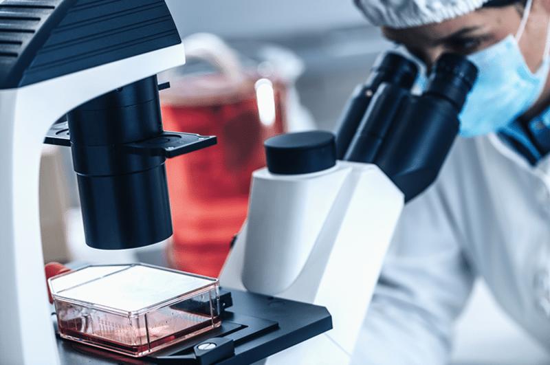 In einem Labor wird an Clean Meat Technologie gearbeitet
