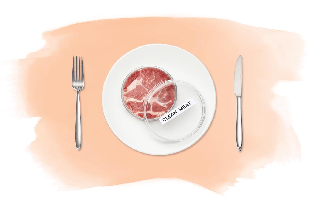 Clean Meat – der lange Weg zum ethischen Fleischkonsum